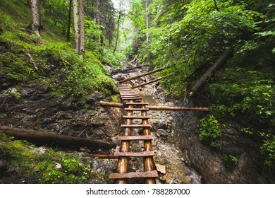 Abandoned old wooden bridge over the mountain river in deep wild lush jungle forest. Road to nowhere. Outdoor extreme activities. Wild nature. Travel nature background