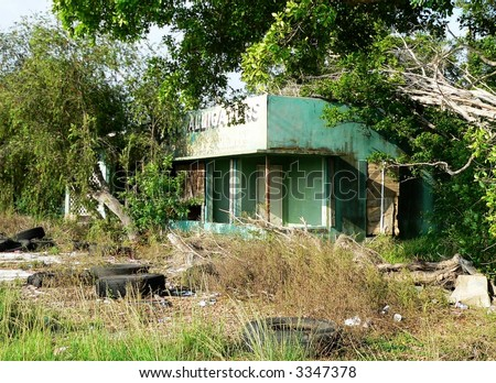 Abandoned and overgrown alligator farm in rural Florida. There are trees that have fallen on the mildew covered turquoise colored building. Discarded tires are scattered around the property.