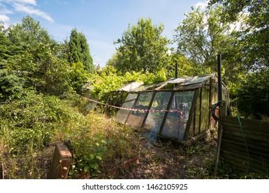 Abandoned overgrown green house image