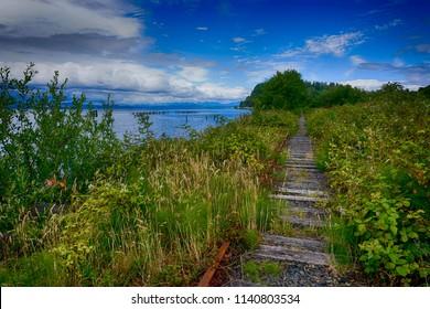 abandoned railroad tracks in Astoria, Oregon