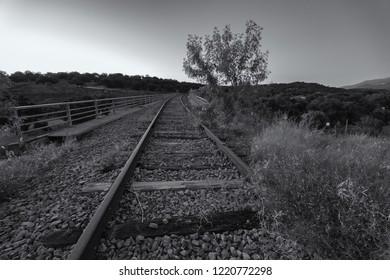Abandoned railway tracks of an old railway line. Near Plasencia. Extremadura. Spain.