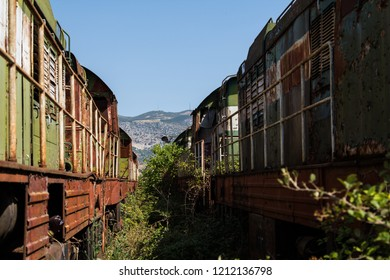 Abandoned railway train corroding in a lost place on the country side of Albania