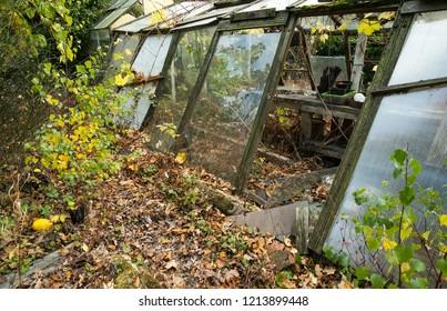 Abandoned ruined garden greenhouse