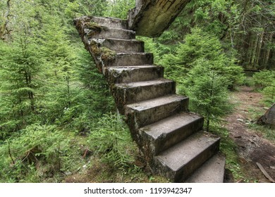 Abandoned ruins of the concrete staircase in the forest