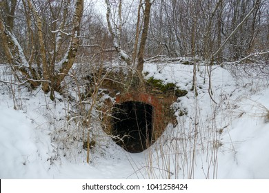 Abandoned ruins of fortifications and bunkers in Riga, Latvia, Mangalsala district. Large area of military heritages in the pine woods. Winter season, bunkers are covered with deep snow.