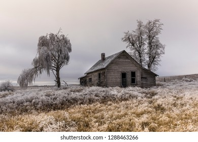 An abandoned rural homestead in winter with frost on the gorund near Davenport, Washington.