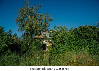 Abandoned Russian village. Ruins of overgrown rural house. Desolation and abandonment concept
