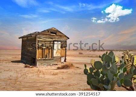 Abandoned Shack in Desert
