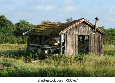 Abandoned shack lost in the meadow