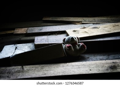 An abandoned stuffed toy teddy bear laying on old broken wood and boxes. Noise at 100%