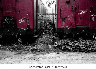 Abandoned tagged train at the old train station