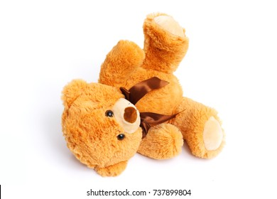 abandoned Teddy bear on a white background