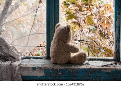 an abandoned teddy bear sits by a broken window in an abandoned house and looks at an abandoned autumn garden