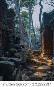 Abandoned temple in the jungle