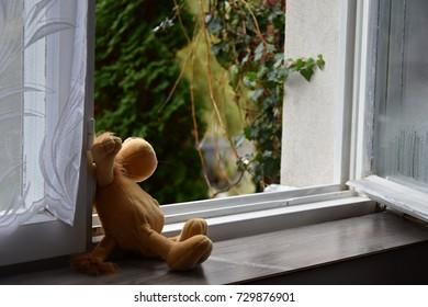 Abandoned toy, open window.
