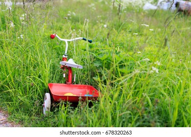 Abandoned tricycle in the ditch