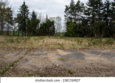 Abandoned war cemetery area them. Mikhail Kutuzov in Boleslawiec. Wasteland. Fallen leaves and thickets in the old cemetery