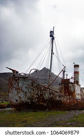 Abandoned whaling boats at Grytviken, South Georgia