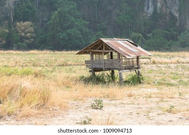 Abandoned wooden cottage in the countryside with mountains in the background