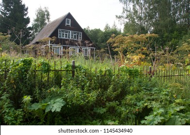 The abandoned wooden house dacha