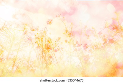 590c01aca65 Sweet color cosmos flowers in bokeh texture soft blur for background with  pastel vintage