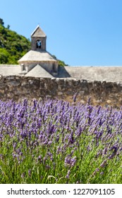 Abbaye de Senanque with blooming lavender field, Vaucluse, Provence, France