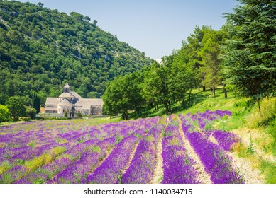 Abbaye de Senanque, Provence. Lavender field with monastery Notre-Dame, Vaucluse region of France