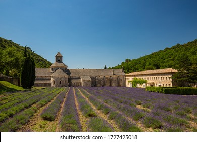 Abbey of Senanque and blooming rows lavender flowers. Gordes, Luberon, Vaucluse, Provence, France, Europe. Famous travel vacation destination landscape