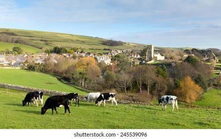 Abbotsbury village Dorset England UK known for its swannery, subtropical gardens and historic stone buildings on the Jurassic Coast