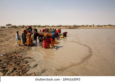 Abeche, Chad - 2 July 2018: Chad women are taking dirty water for a drink and use for daily life with donkey