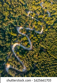 Above aerial view of serpentine in a valley surrounded by green forests. Great trip on winding road. Sardinia, Mediterranean island. Vertical photo, sunset time. Vacation and tourism concept.