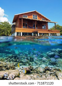Above and below sea surface with a tropical house over water and a school of fish underwater, Caribbean,Central America