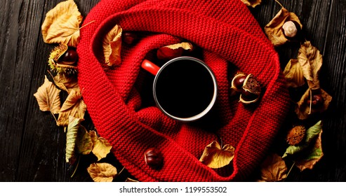 From above shot of dry autumn leaves and nice nuts lying on black lumber tabletop around red knitted scarf and mug of yummy hot drink