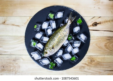 Above shot of fish on ice with parsley