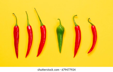 Above view at Chili pepper on yellow background