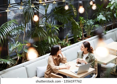 Above view of content young lady entrepreneurs sitting at table in cafe with tropical plants and discussing business strategy while drinking coffee