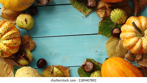 From above view of orange pumpkins and green leaves place in circle with space in middle on blue wooden background