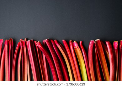 Above view with rhubarb stalks aligned on a black background. Fresh vegetables. Organic rhubarb stems on a black table