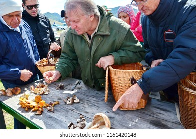Abruzzo, Italy, September 29, 2015: People looking at wild mushrooms picked in Gran Sasso National Park, Abruzzo, Italy.
