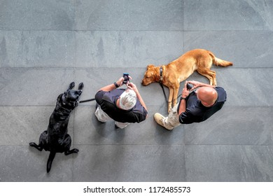 abstakt image of security guard with a dog in the lobby of a modern business center