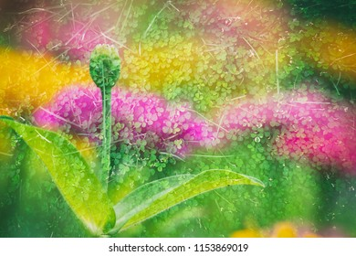 abstra t double exposure color flower nature background