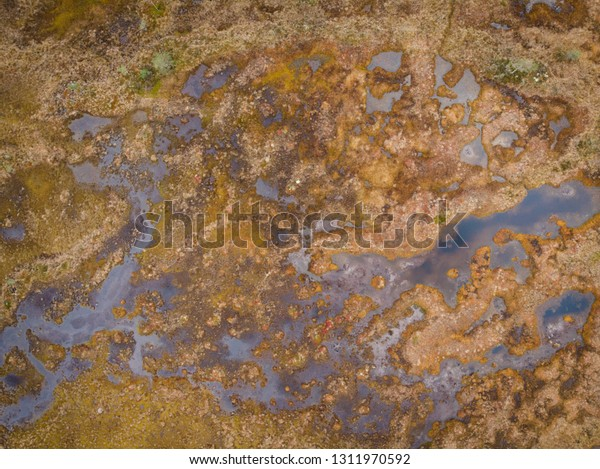 Abstract aerial landscape picture of swamp
