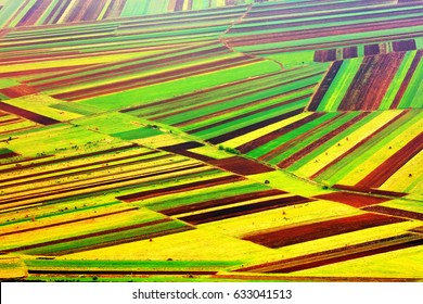 Abstract agricultural fields