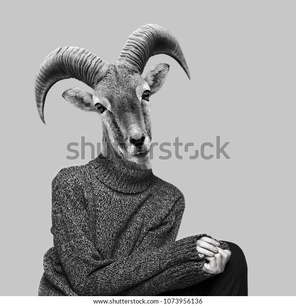 Abstract Art Collage Big Horn Sheep Royalty Free Stock Image