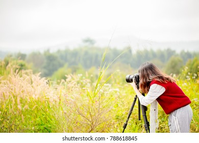Abstract Asian Women are taking pictures of natural scenery at the mountain viewpoint. Illustration for travel photography. Images for adding text or assembling articles.