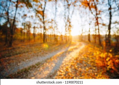 Abstract Autumn Natural Blurred Forest Road Background. Bokeh, Boke Woods With Sunlight, Red and Yellow Warm Colors of Nature.