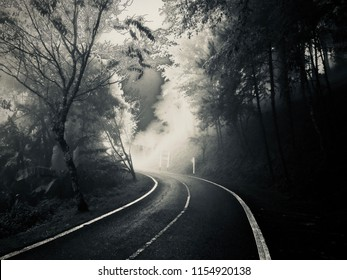 Abstract background with art effect, mystery on the road in a forest