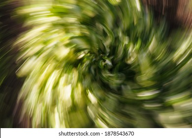 Abstract background of big green leaves motion blur with green tone.