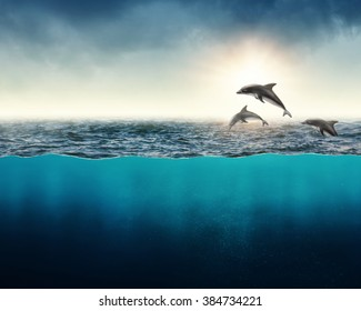 Abstract background with dolphins in ocean