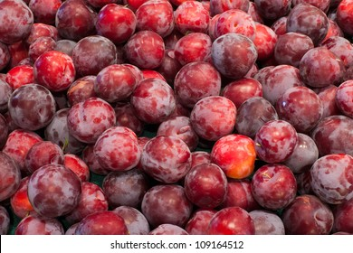 Abstract background of freshly harvested Santa Rosa plums